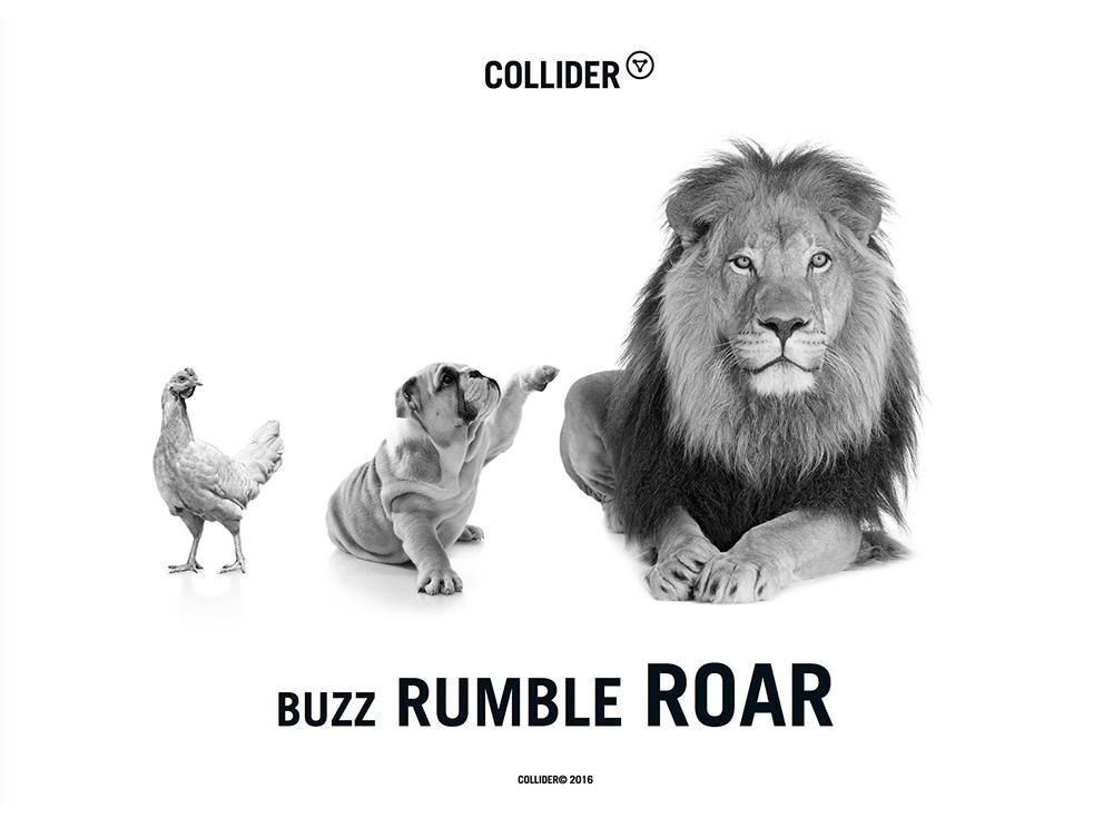collider-lion.jpg